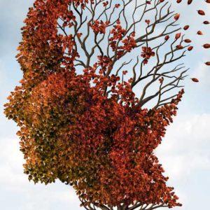 Что такое нейродегенеративные заболевания?